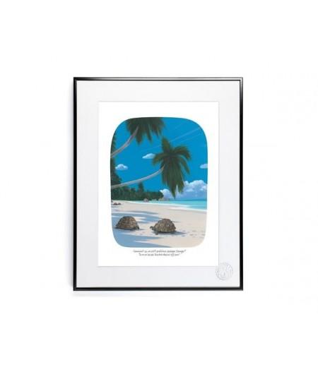 30x40 cm Voutch Tortues - Affiche Image Republic