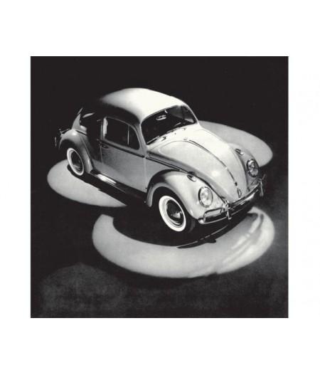 40x50 cm ADV Beetle 51 to 62 - Affiche Image Republic, L'Ornithorynque Marseille