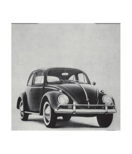 40x50 cm ADV Beetle Lemon - Affiche Image Républic