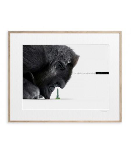 40x50 cm Affiche Nanoblock Gorille - Image Republic