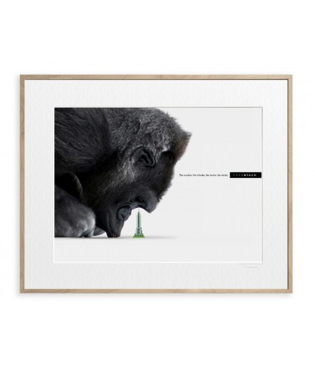Affiche ADV Nanoblock Gorille - Image Republic
