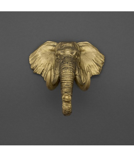 Porte-Clés Mural Éléphant - Never Forget Gold - Iron & Glory