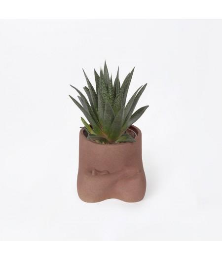 Namasté DOIY - Pot à plantes Namaste