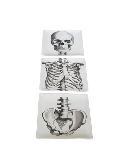 S/3 assiettes carrées Squelette 'Sciences Nat'- Chehoma
