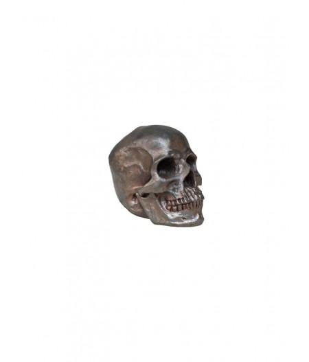 Déco crâne marron -– Chehoma