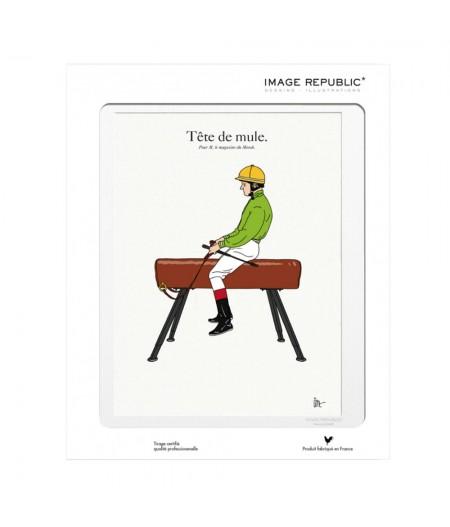 10.5x15 TIXIER Tete De Mule - Carte Postale double avec enveloppe - Image Republic